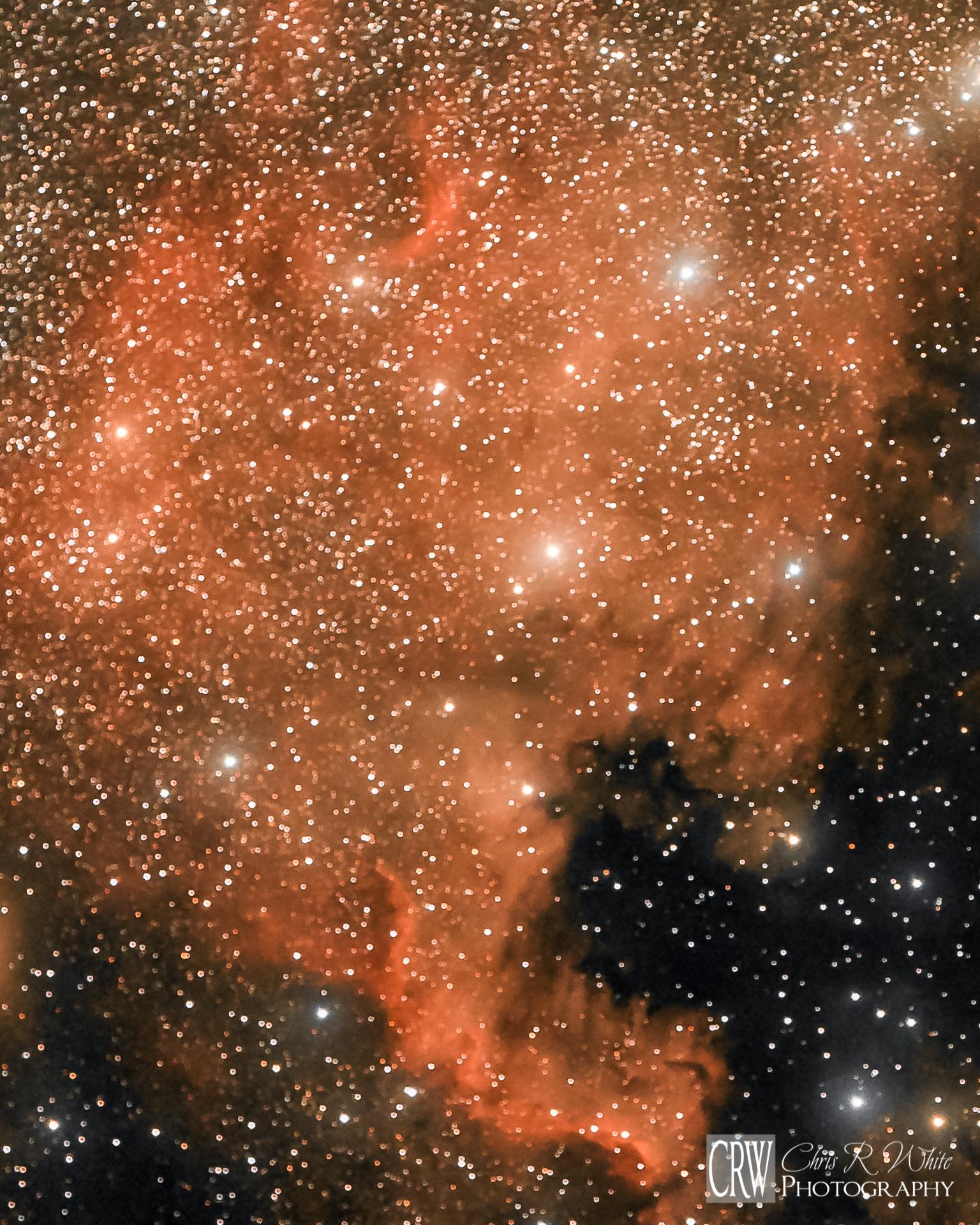 NGC 7000, The North American Nebula
