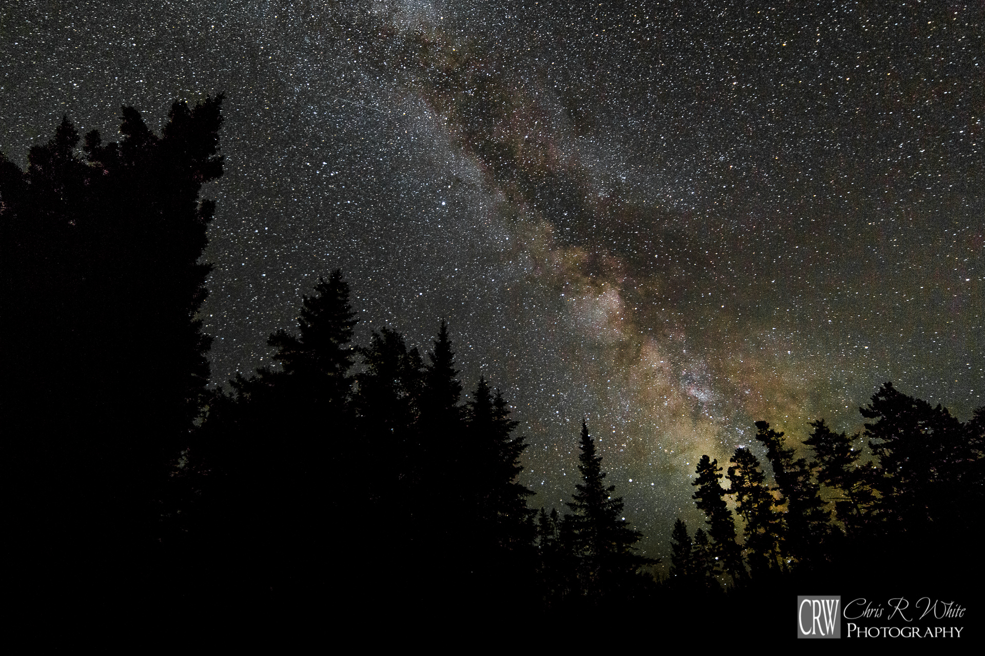 The Milky Way towers above the Boreal Forest of the North Maine Woods.