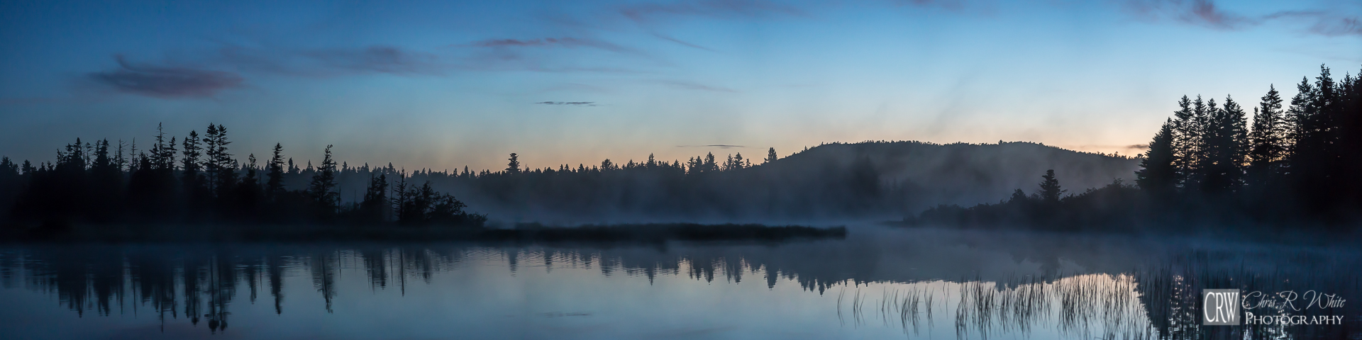Every morning we shoved our kayaks off into mist, in search of wildlife and natural landscapes.   -Click Image for Larger View-