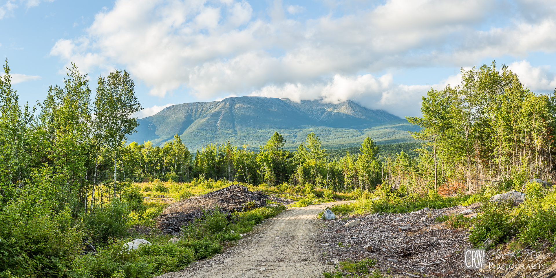 Mount Katahdin from one of the many logging access roads surrounding the park.