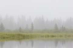 20130629-Misty-River-Scape